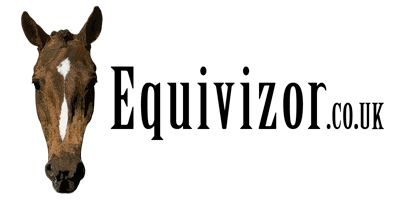 Equivizor Fly Mask (with nose flap and ears) - XLarge - Equivizor - Advanced Head Protection For Horses